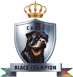 Canil Black Champion